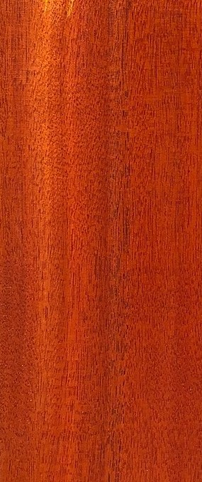 Australian Scented Rosewood