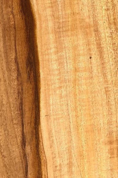 Jamaican Fiddlewood