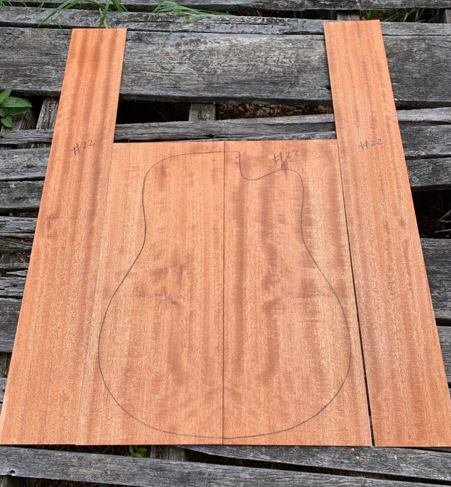 Australian timber for luthiers