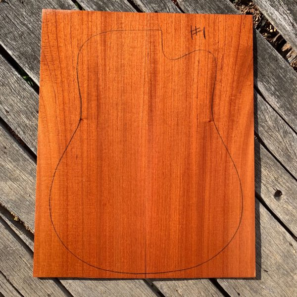 Acoustic guitar soundboard