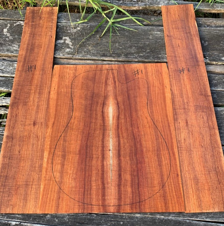 Australian tonewood for luthiers