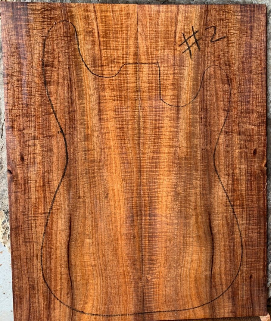 Tasmanian tonewood