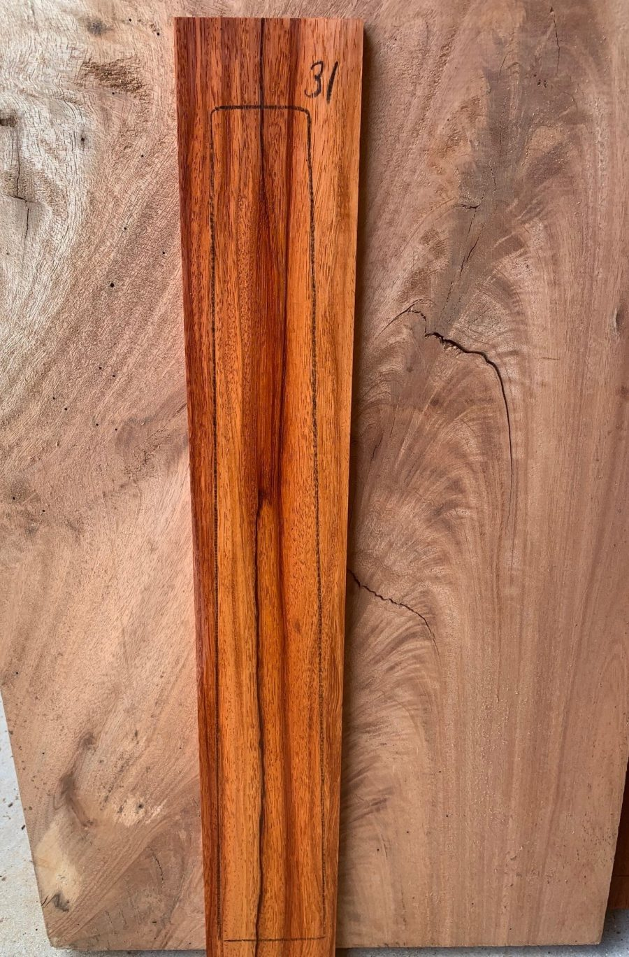 Timber for Lutherie
