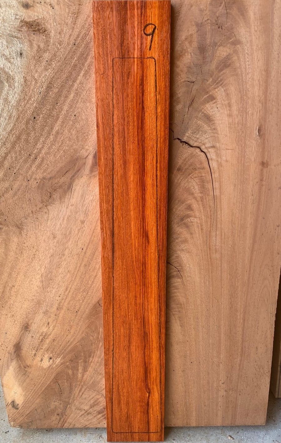Australian timbers for musical instruments